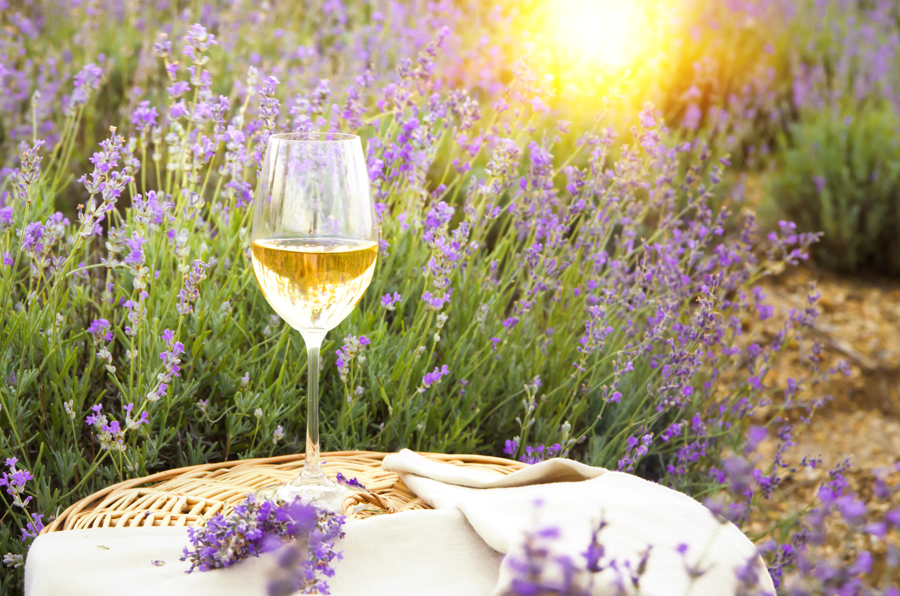 Sauvignon Blanc Dag